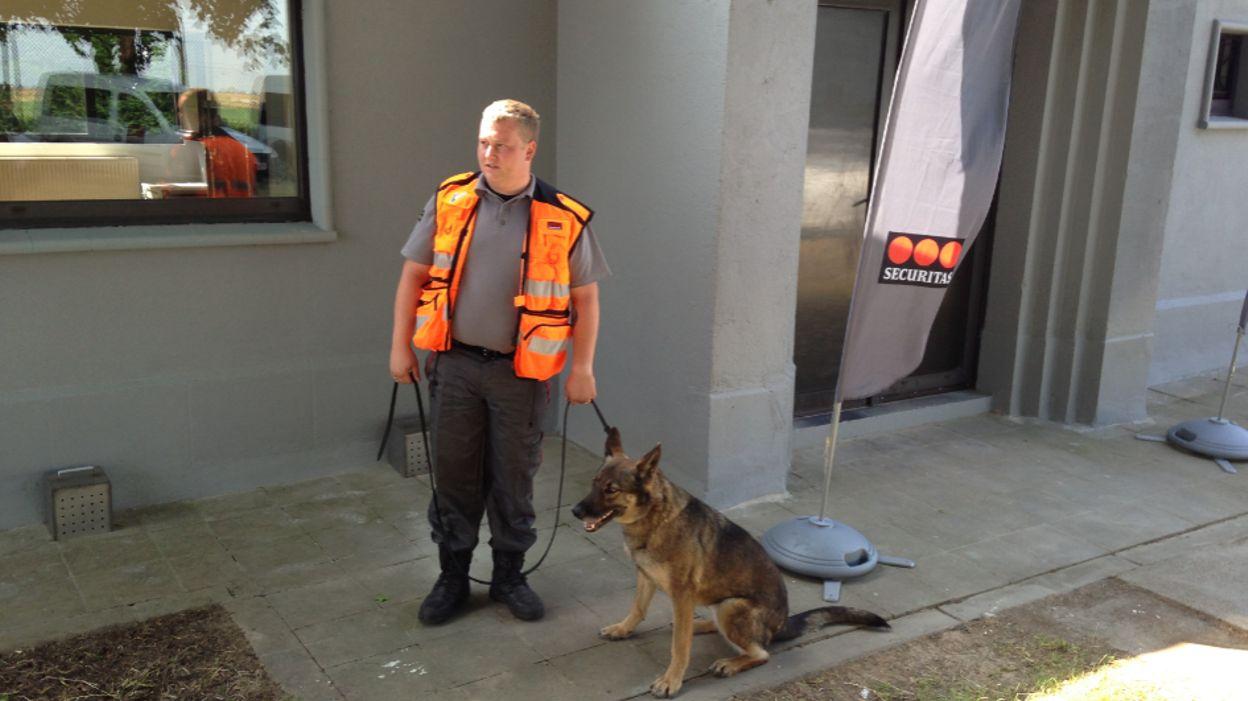 Un centre de formation pour chiens détecteurs d'explosifs