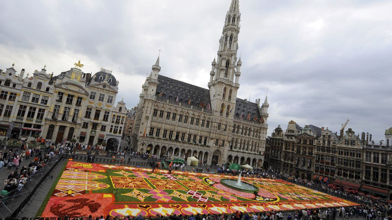 700 000 fleurs colorent la grand place de bruxelles - Office de tourisme bruxelles grand place ...