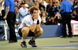 Andy Murray enfin roi