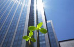 Economie et développement durable sont-ils incompatibles ?