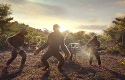 Coldplay transformé en singes: l'incroyable clip est arrivé