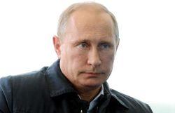 Le président russe Vladimir Poutine le 29 août 2014 à Seliger, en Russie