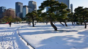Image d'illustration: le Japon sous la neige