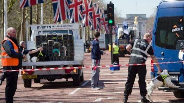 Un chien renifle un bus à la recherche d'explosifs, le 20 avril 2013 à Londres, à la veille du marathon prévu sous protection policière renforcée
