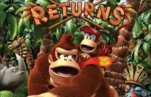 LSDJV: Donkey Kong Country Returns 3D