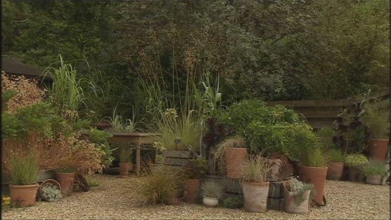 Knoll gardens dans le dorset extrait de l 39 mission for Jardins et loisirs
