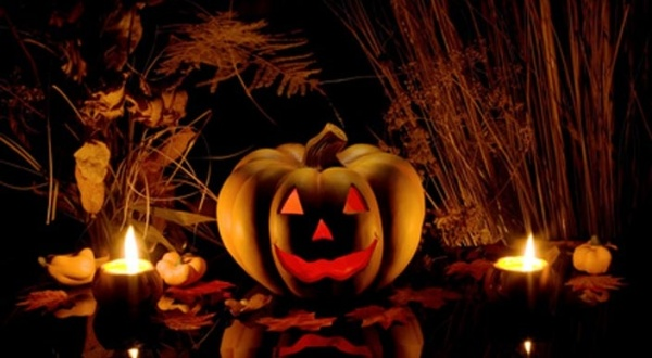 "A l'approche d'Halloween... ""Les Morts stupides !"""